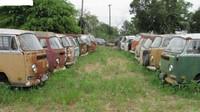 Sběratel, kterému se koníček vymkl z rukou? Svérázný Kanaďan prodává 55 retro obytných Volkswagenů - anotační obrázek