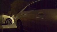 Nový Sentry Mode natočil zloděje během vykrádání dvou Tesla Model 3 (YouTube/ Now You Know)