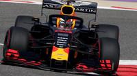 Max Verstappen v tréninku v Bahrajnu