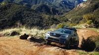 Nové Subaru Outback
