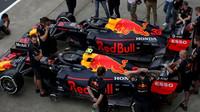 Monoposrty Red Bullu v boxech