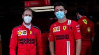Brundle o Vettelovi: Týmové příkazy nikdy moc neřešil, letos bude létat - anotační obrázek